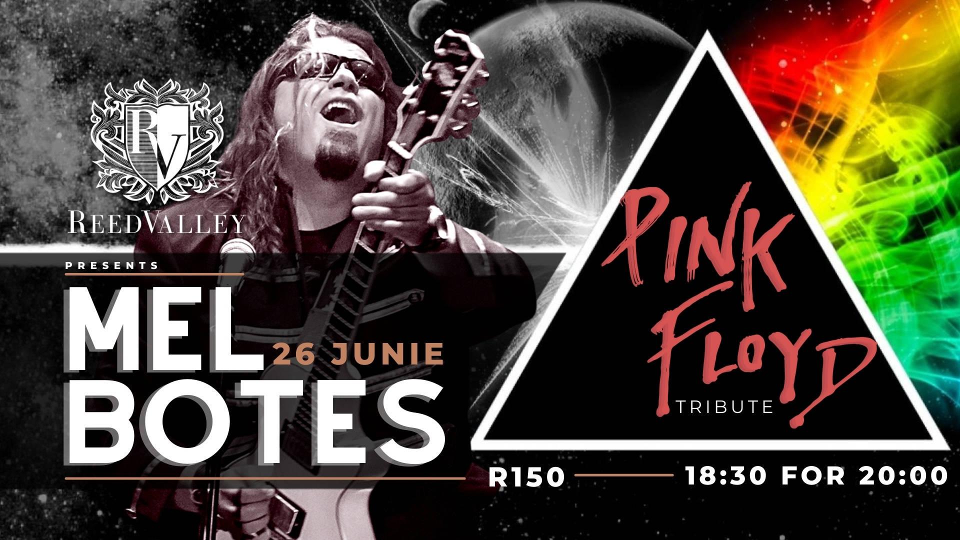 Mel Botes - Pink Floyd Tribute
